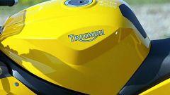 Triumph Daytona 600 - Immagine: 8