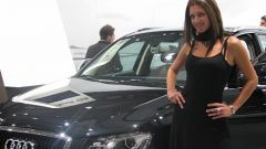 Motor Show 2008: Gallery 1 - Immagine: 56