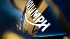 Triumph Daytona 675 2009 - Immagine: 7