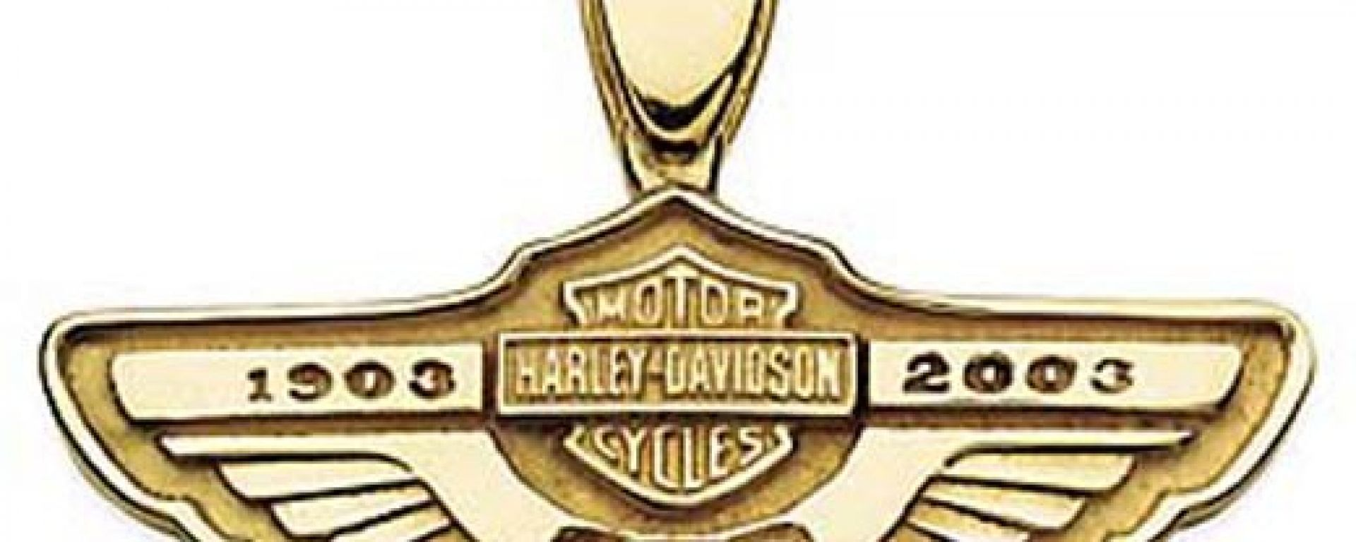 Harley-Davidson 100th Collection