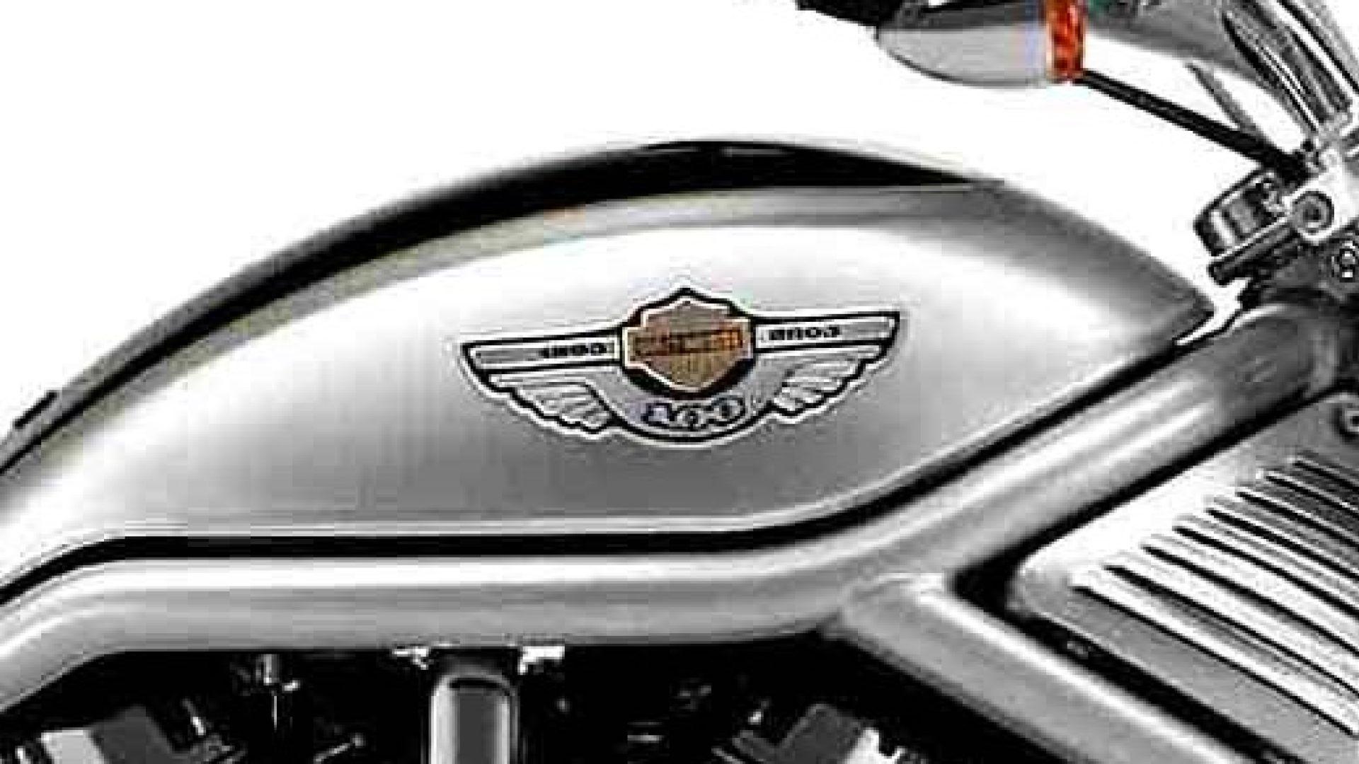Immagine 11: Harley Davidson: tutti i modelli del centenario