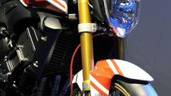Yamaha FZ1 Abarth Assetto Corse - Immagine: 6