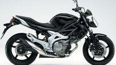 Suzuki Gladius 650 - Immagine: 4
