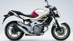 Suzuki Gladius 650 - Immagine: 6