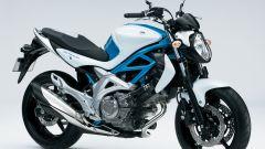 Suzuki Gladius 650 - Immagine: 7