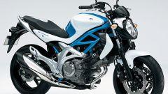 Suzuki Gladius 650 - Immagine: 18