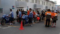 8 ore di Suzuka 2008 - Immagine: 17