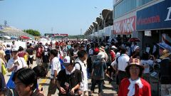 8 ore di Suzuka 2008 - Immagine: 57