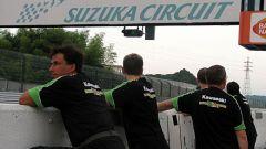 8 ore di Suzuka 2008 - Immagine: 81