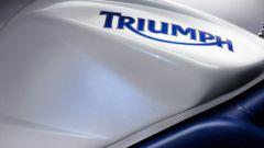 Triumph Daytona 675 SE - Immagine: 1