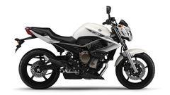 Yamaha XJ6 - Immagine: 1