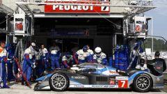 Le Mans 2009 in 200 immagini - Immagine: 74