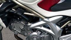 Suzuki Gladius - Immagine: 10