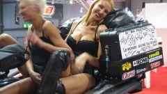 Eicma 2009 live, tutto il Salone in 210 foto - Immagine: 171