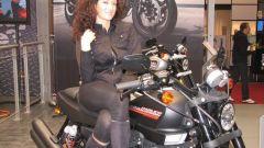 Eicma 2009 live, tutto il Salone in 210 foto - Immagine: 185