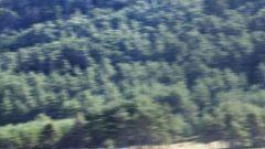 La Dacia Duster in 75 nuove foto - Immagine: 9