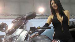 Motor Bike Expo 2010 - Immagine: 23