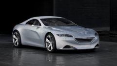 Il Leone Peugeot cambia pelle - Immagine: 9