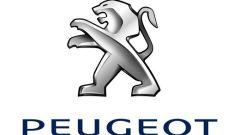 Il Leone Peugeot cambia pelle - Immagine: 15