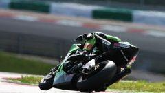 Gran Premio di Portogallo - Immagine: 15