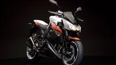 Kawasaki Limited Edition - Immagine: 2