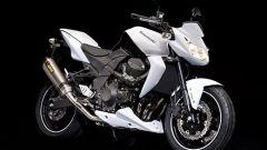 Kawasaki Limited Edition - Immagine: 4