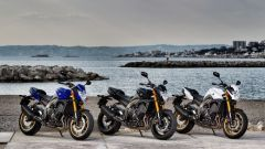 Yamaha FZ8 - Immagine: 37