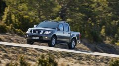 Nissan Navara & Pathfinder 2010  - Immagine: 2