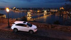 Lexus RX 450h   - Immagine: 25