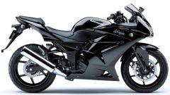 Kawasaki Ninja 250R - Immagine: 11