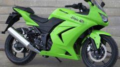 Kawasaki Ninja 250R - Immagine: 19