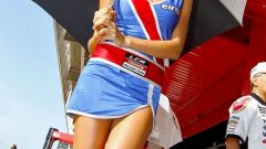 Paddock girl 2010 - Immagine: 85