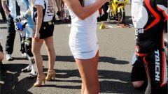 Paddock girl 2010 - Immagine: 100