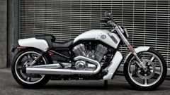 Harley-Davidson Sportster Super Low - Immagine: 11