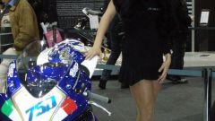 Bike Expo 2008 - Immagine: 8