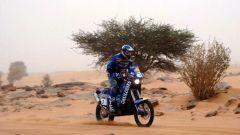 La Dakar 2008 annullata per terrorismo - Immagine: 1