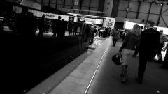 Reportage da Ginevra - Immagine: 115