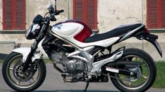 Suzuki Gladius 650 - Immagine: 3