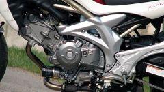 Suzuki Gladius 650 - Immagine: 11