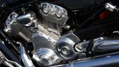 In USA con le Harley - Immagine: 9