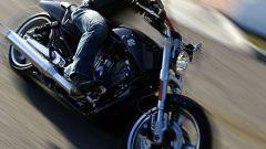 In USA con le Harley - Immagine: 3