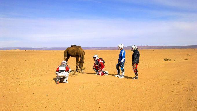 Immagine 113: In Marocco con la Yamaha Super Ténéré