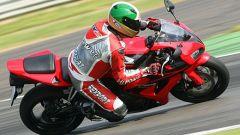 A Monza con le 1000 Superbike - Immagine: 54
