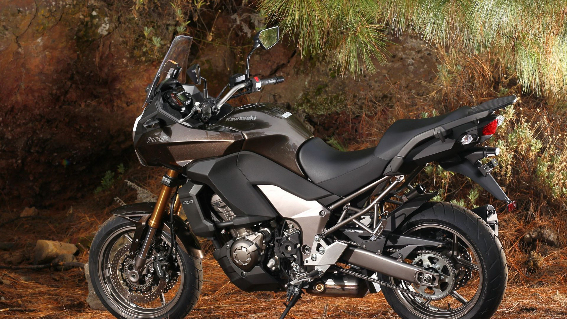 Immagine 37: Kawasaki Versys 1000: ora anche in video