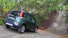 Immagine 46: Fiat Panda 4x4