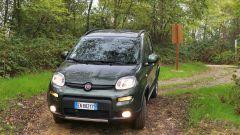 Immagine 39: Fiat Panda 4x4