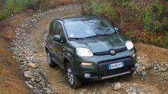 Immagine 37: Fiat Panda 4x4