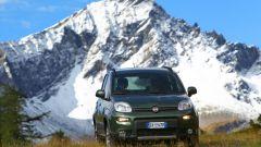 Immagine 9: Fiat Panda 4x4