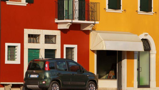 Immagine 28: Fiat Panda 4x4