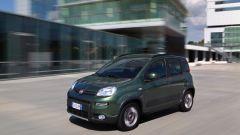 Immagine 21: Fiat Panda 4x4